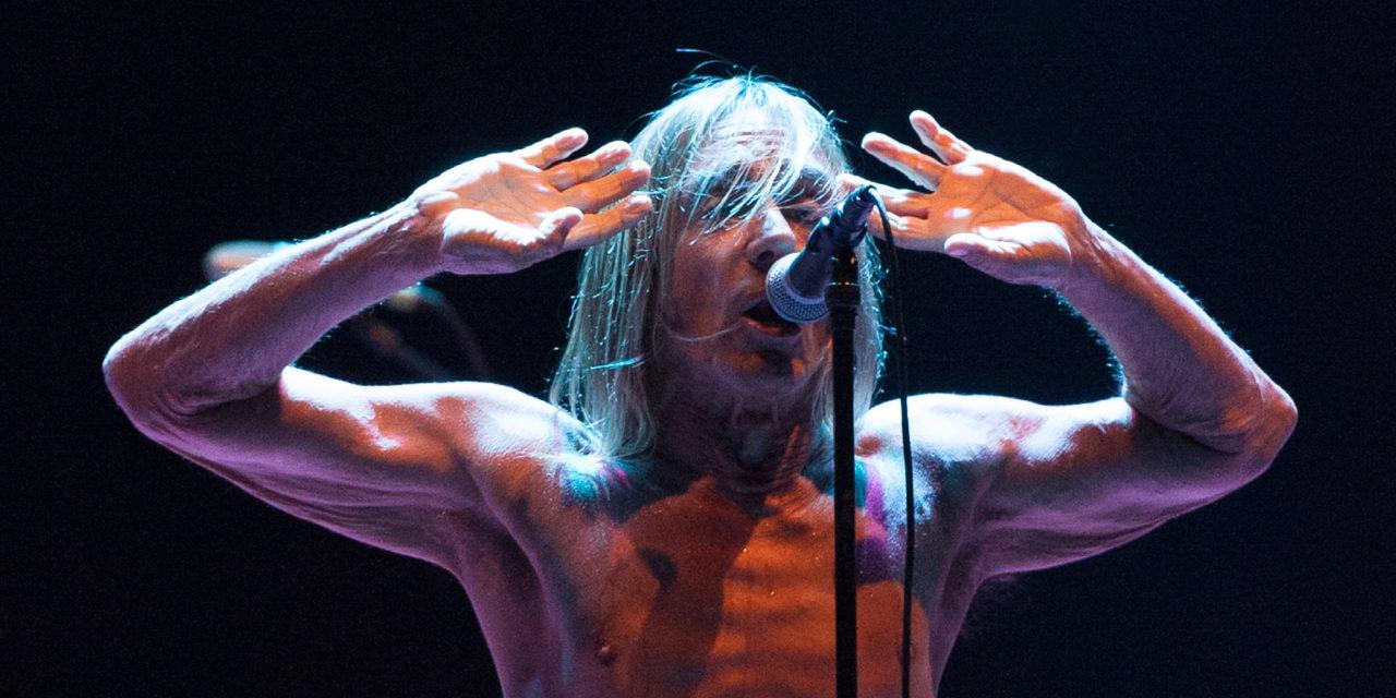 Iggy & The Stooges – Lokerse Feesten 2013